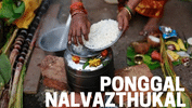 Ponggal, A Celebration to Thank the Nature