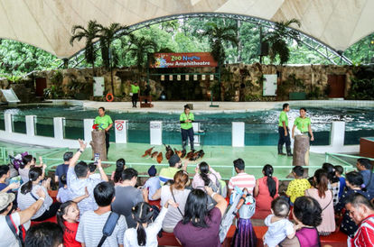 Much-Needed Revival: Zoo Negara Hits Maximum Visitor Capacity In First Two Days Of Reopening