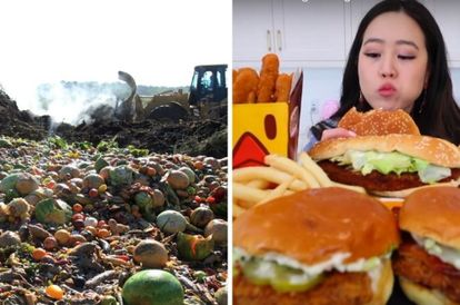 china-s-anti-food-waste-law-bans-food-bloggers-from-binge-eating-and-fines-those-who-waste-food