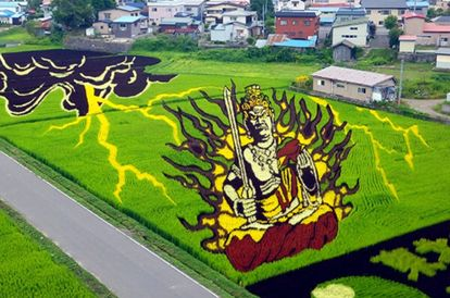 Incredible! This Village In Japan Turns Paddy Fields Into Huge Canvases For Art
