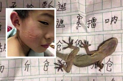 student-sleeps-off-while-studying-wakes-up-with-imprint-of-lizard-on-face