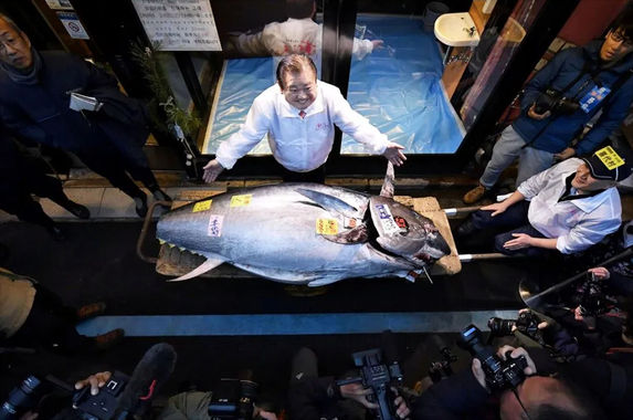 japan-s-tuna-king-paid-a-whopping-rm7-4-million-to-buy-a-bluefin-tuna
