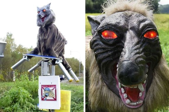 japan-comes-up-with-red-eyed-howling-monster-wolf-robots-to-scare-away-wild-bears
