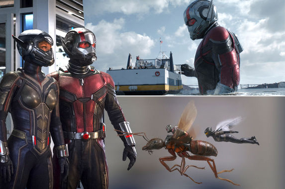 here-s-our-itsy-bitsy-teeny-weeny-little-review-of-ant-man-and-the-wasp