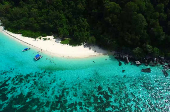 guys-we-need-your-help-to-preserve-the-beautiful-corals-of-tioman-island-or-else-it-would-disappear