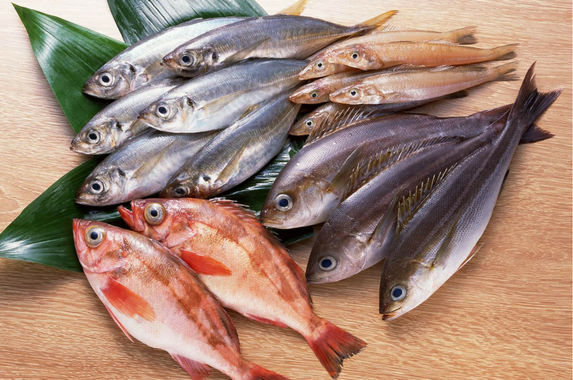 the-government-wants-you-to-eat-more-fish