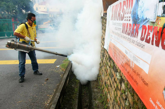 the-number-of-dengue-cases-has-dropped-in-the-past-year