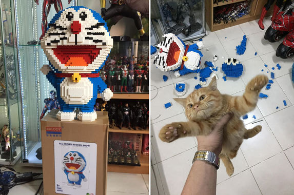 kitty-cat-destroys-owner-s-2-434-piece-doraemon-figurine-not-sorry-at-all