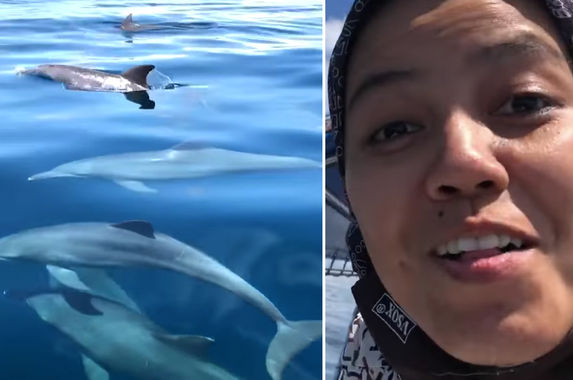 resort-manager-in-pulau-tioman-captures-videos-of-a-pod-of-dolphins-swimming-happily-beside-his-boat