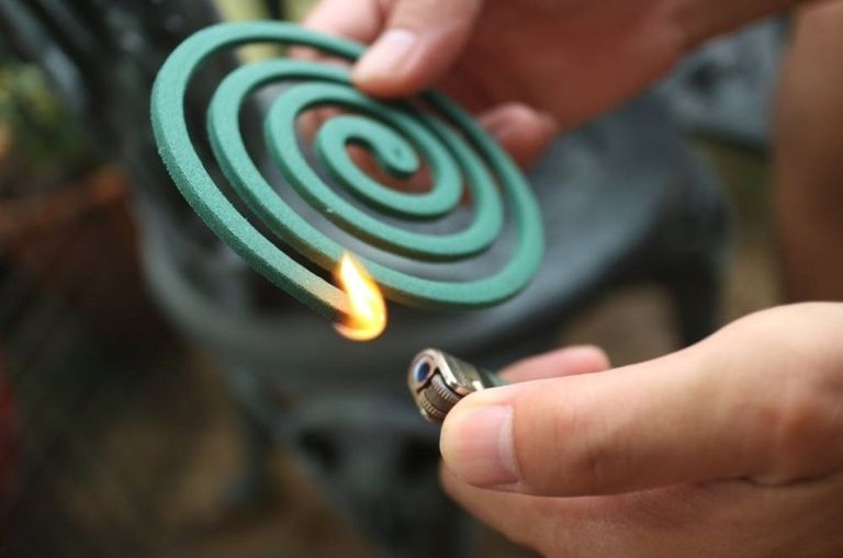 mind-blowing-burning-a-single-mosquito-coil-is-equivalent-to-smoking-up-to-137-cigarettes