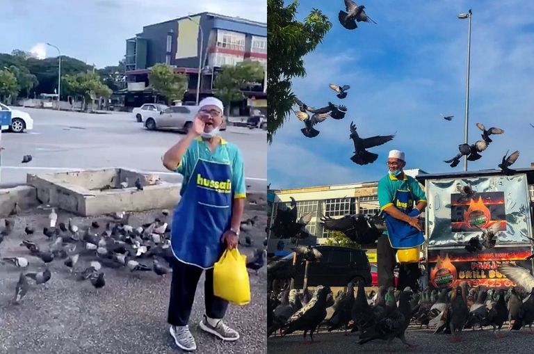 video-meet-kedah-s-very-own-birdman-who-gathers-birds-with-just-one-call