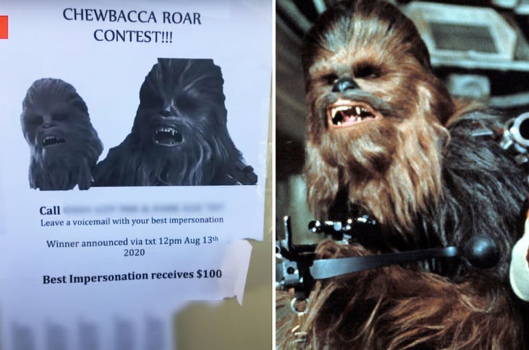 woman-gets-bombarded-with-chewbacca-roars-after-crazy-ex-posts-flyers-with-her-number-on-it