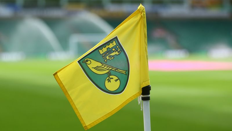Coronavirus: Norwich City player among two more positive tests in Premier League